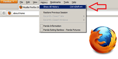 View internet history in Firefox